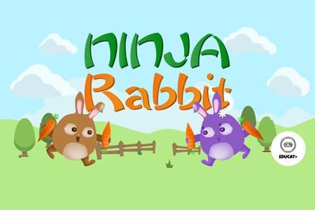 Ninja Rabbit Pro